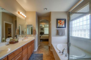 Master Bath chamdler interior design
