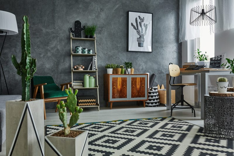 Grey apartment with decorative cactus, carpet and wooden furniture
